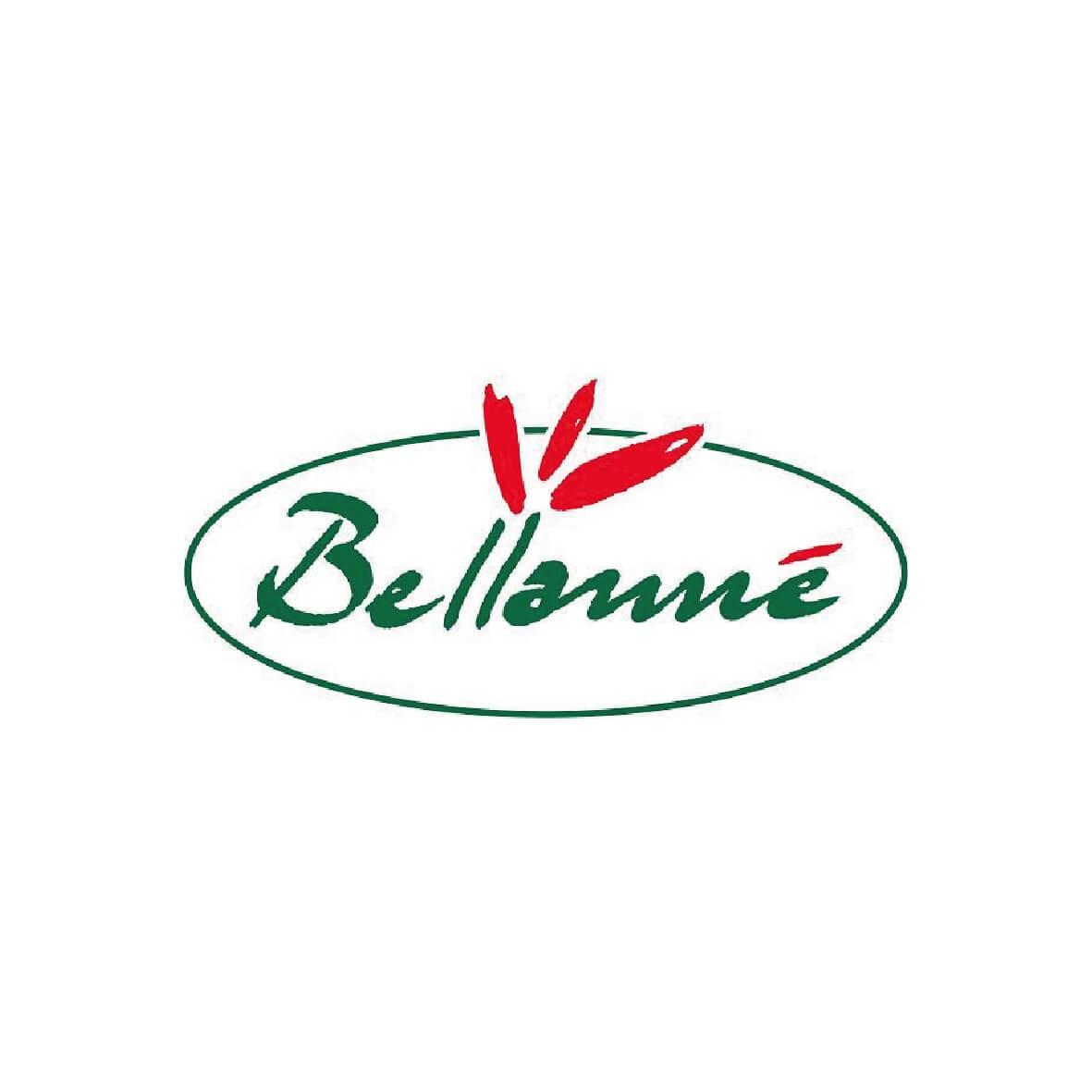 logo-bellanne-01