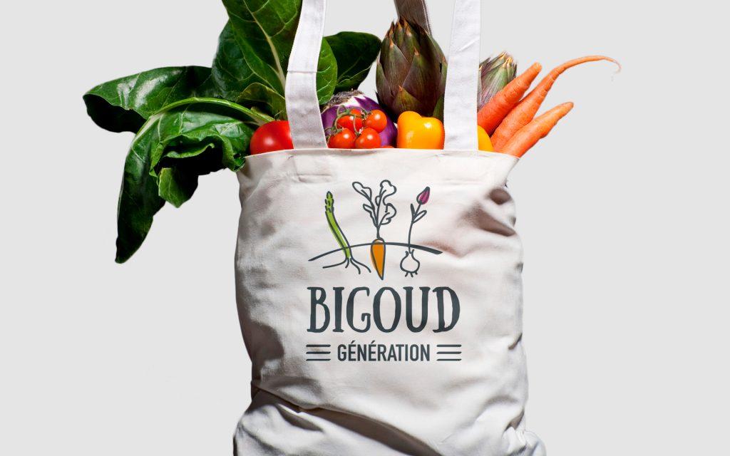 Bigoud-génération-logo