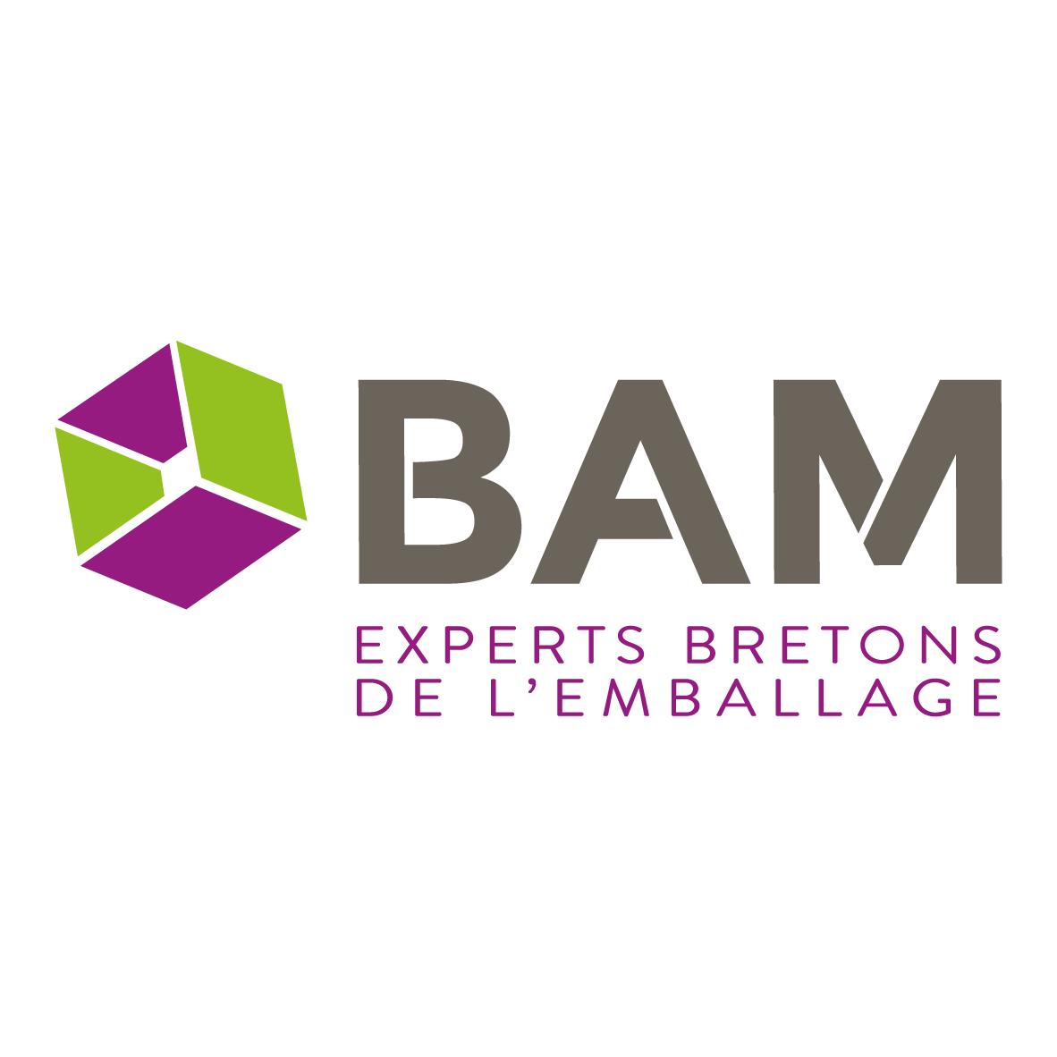 Logo BAM-01