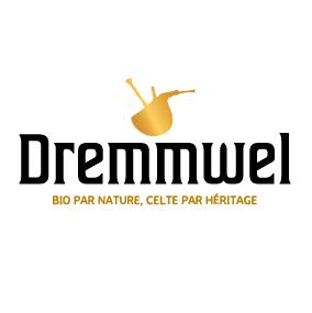 Logo Dremmwel-01